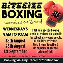2021 08 SUMMER Online Bitesize Boxing.png