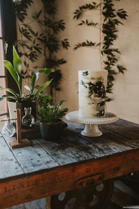 Plant Based Styled Shoot_Olson Design Ph