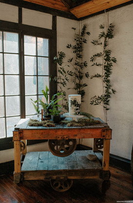 Plant Inspired Styled Shoot_McKenna Rhyn