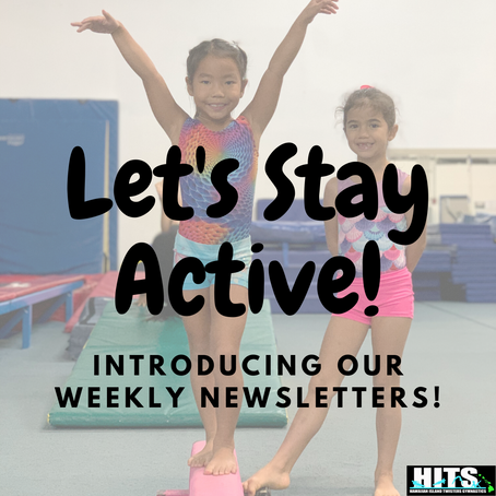 Introducing Our Weekly Newsletters!