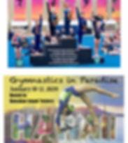 GIP 2020 flyer-page-001.jpg