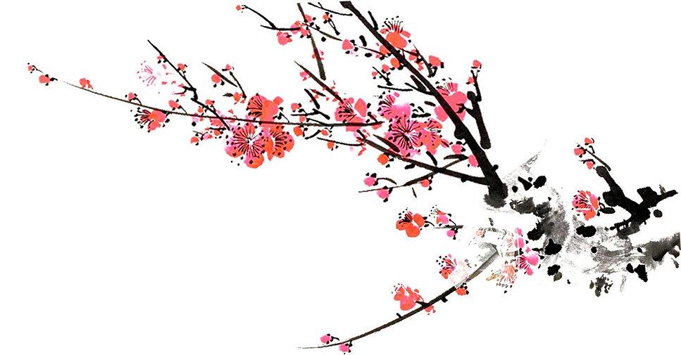 flower3050.jpg