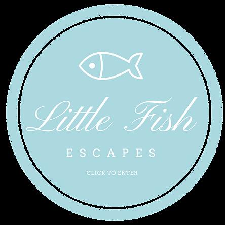 Little Fish Circles-4.png