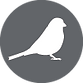 BlackSparrow-White-30x30mm-FINAL.png