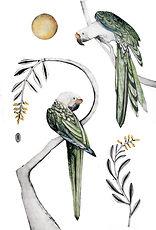 Great Green Macaw for web II.jpg