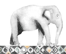 Indian elephant to send.jpg