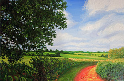 Beesonend Lane - In Summer