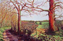 Waterend Lane - In Winter