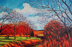 Coleman Green Lane - In Autumn
