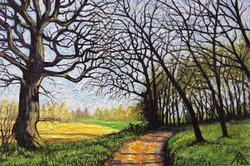 Waterend Lane - overlooking Brocket