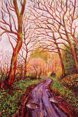 Mud Lane - in Autumn