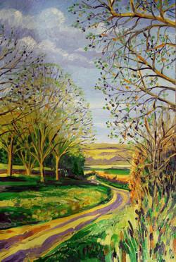 Coleman Green Lane - In Spring