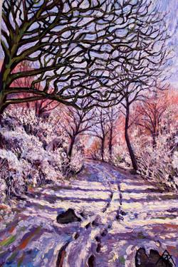 Mud Lane - in Winter