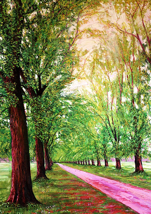avenue of trees.jpeg