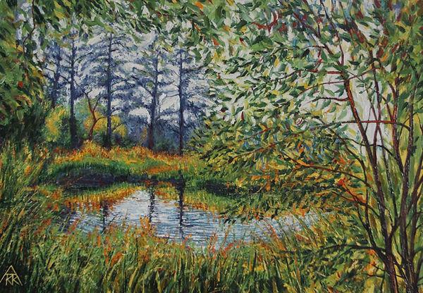 Harpo Ponds and Rothy Park 006.JPG