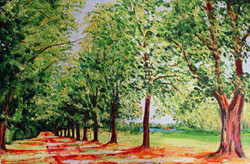 Rothamstead Park - In Summer