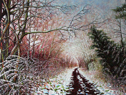 The Nickey Line (in winter) Luton Ho
