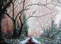 The Nickey Line - under snow