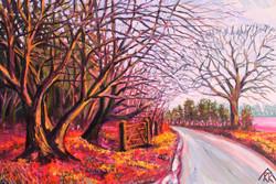 Dowdells Lane - in Winter