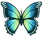 New_BlueGreen_Butterfly_NoBottom.png