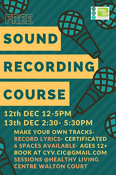 sound rec course ayl.png