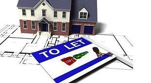 Princeps Property Development, home improvement