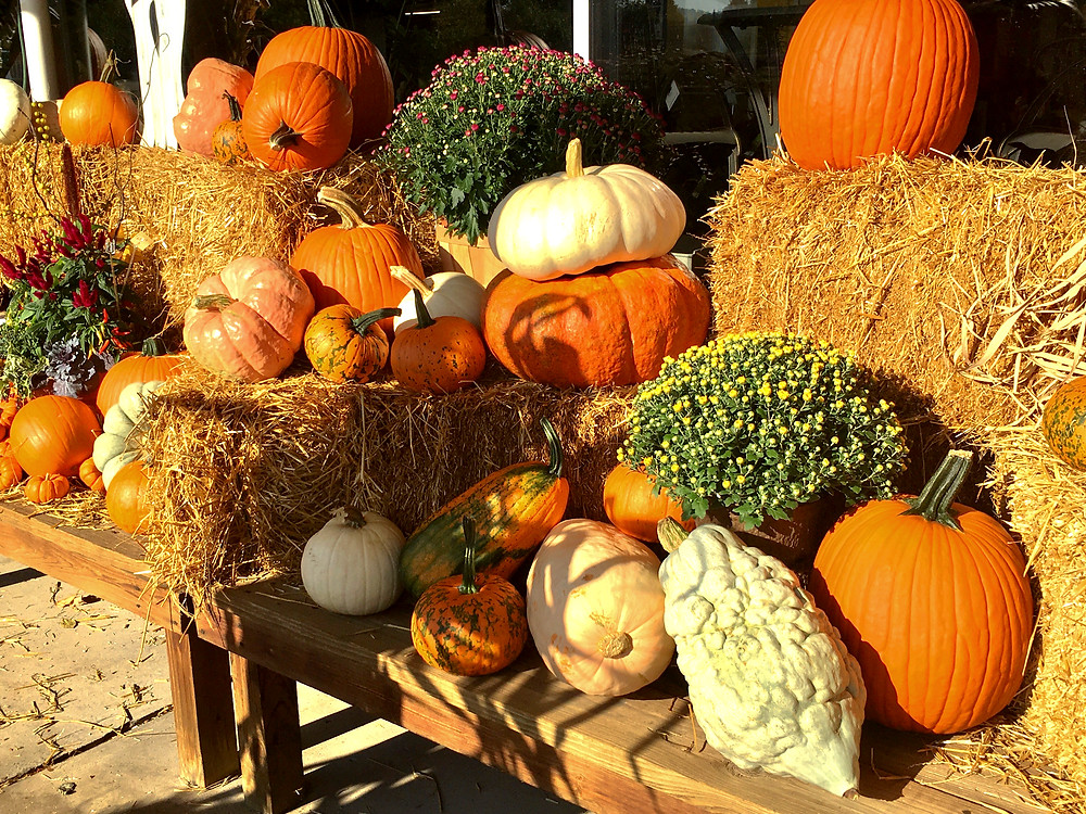 Straw bales, pumpkins, gourds, and mums; everything you need to decorate your porch.