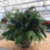 Fresh Cut Green Pot_edited.jpg