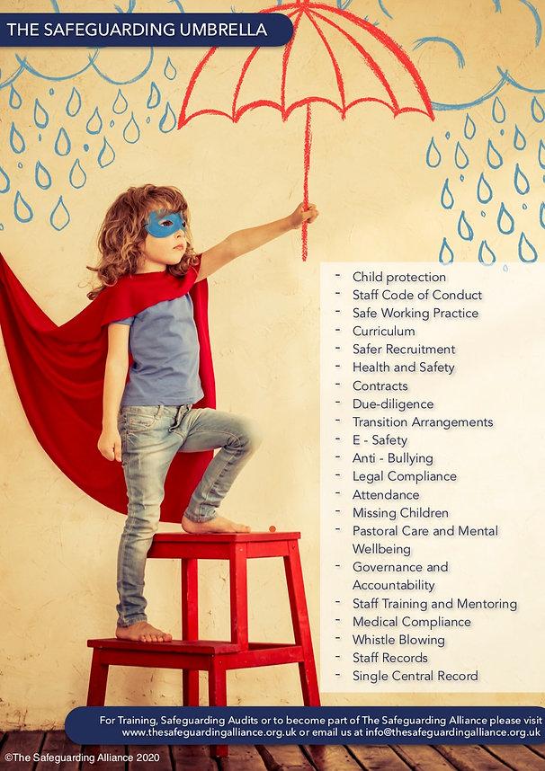 The Safeguarding Umbrella .jpg