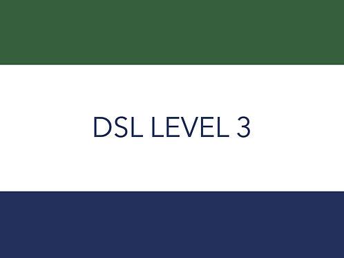 DSL LEVEL 3
