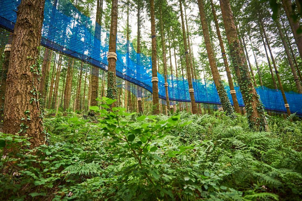 Fforest Adventures,  Zip World - Visit Wales