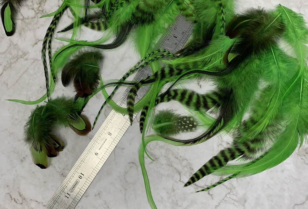 Bulk Lot Mixed Kelly Green Feathers for Crafts St. Patricks Day Feathers 50