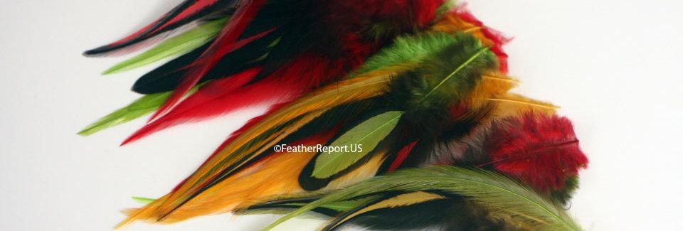 Rasta Mix Red Gold Green Black Craft Feathers 30PCS