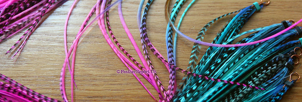 Mermaid Hair Feather Extensions Pink Purple Blue 10