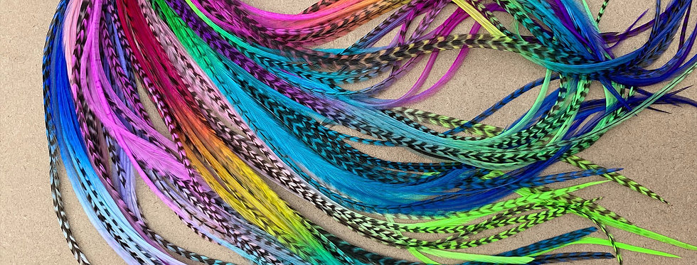 Long Rainbow Hair Feathers Extensions 110 Real Feathers for Hair or Crafts