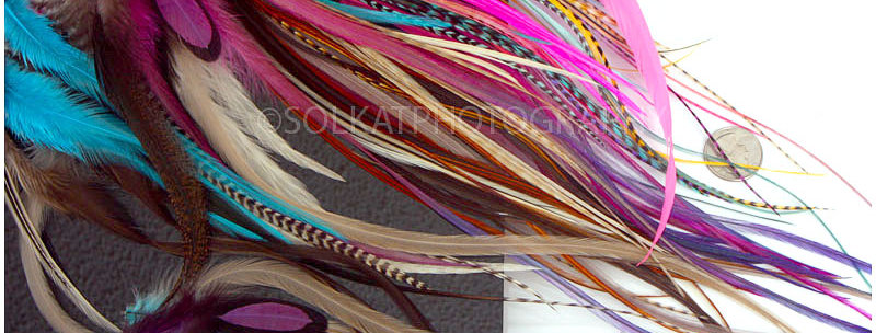 Mixed Lot Rooster & Hen Craft Feathers Dyed Colors - 50 Pack