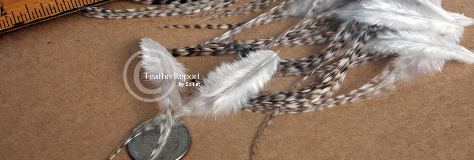 Brown Grizzly Rooster Saddle Feathers