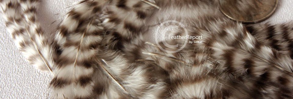 100PCS Grizzly Rooster Marabou Feathers Millinery