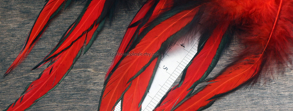 Cherry Red Laced Rooster Feathers Saddle Feathers for Crafts Dreamcatchers 8PACK
