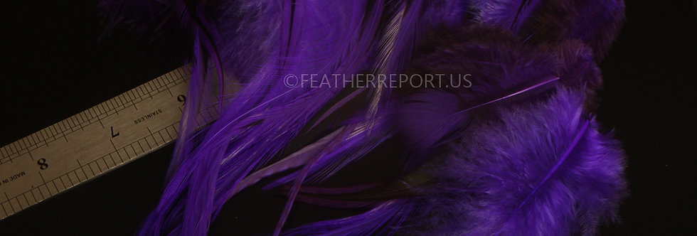 Wholesale Craft Feather Supplies Purple Rooster 30PCS