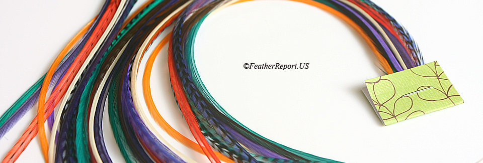 Teal Green Purple Orange Hair Feathers / Beads 10