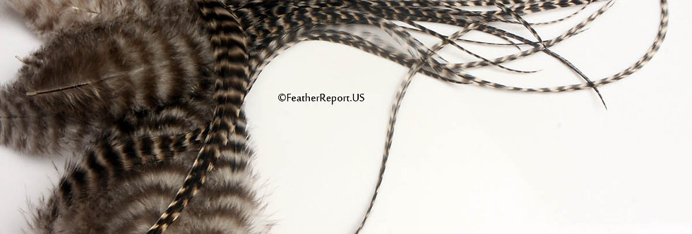 Long & Fluffy Hair Feathers Wholesale Grizzly