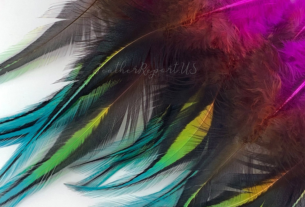 Rainbow Craft Feathers Pink Orange Yellow Green Blue Feathers Rooster 12PCS