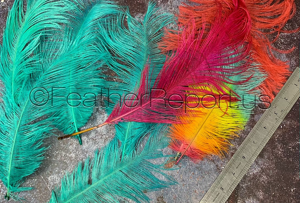 Dyed Large And Medium Ostrich Feathers Burlesque Arrangements Bouquet Coral Teal