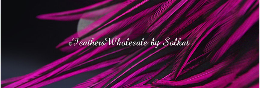 Magenta Laced Craft Feathers Rooster Saddle Feathers for Crafts Dyed Deep Pink