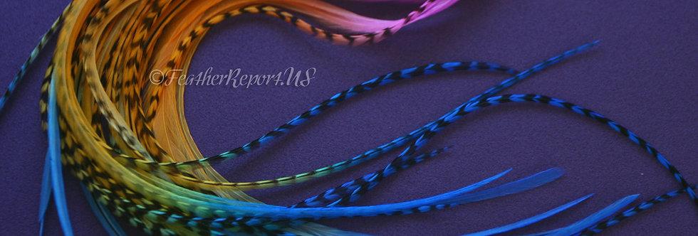 Feather Hair Extension Kit Raspberry Orange Blue 10
