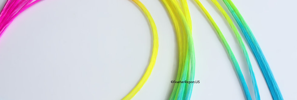 Extra Long Rainbow Hair Feather Extensions 10