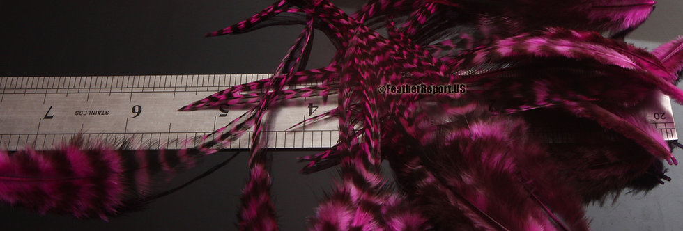 Hot Pink Grizzly Rooster Feathers Wholesale 30