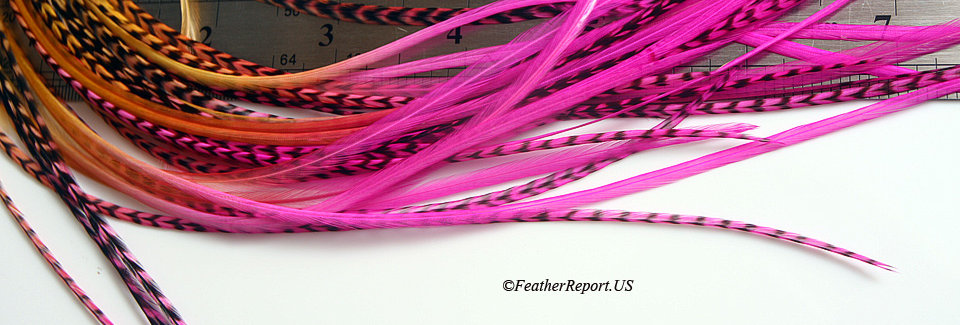 Golden Hot Pink Ombre Feather Hair Extensions 10