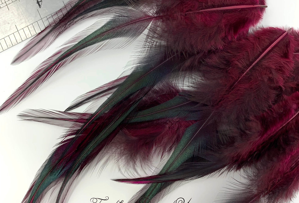 "Burgundy Red Laced Rooster Saddle Feathers for Crafts 12PACK 4-7"" Holiday Red"